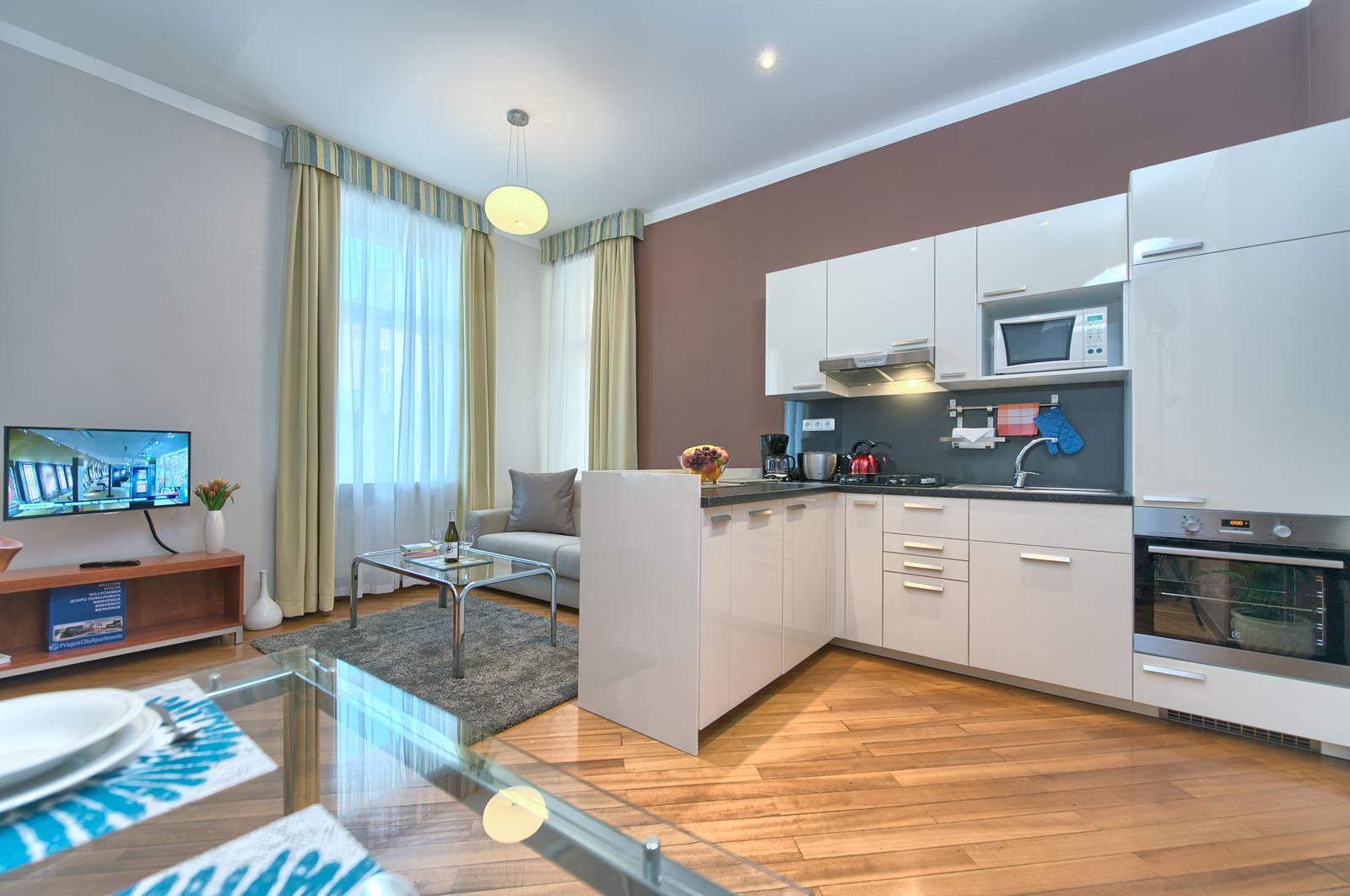 captivating studio apartment one room kitchen   Spacious studio rent in Prague with high value